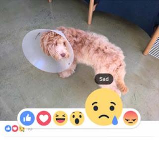 Tips Menggunakan Facebook Emoji Reactions 2016